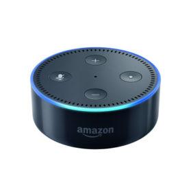 Echo Dot (2nd Generation)