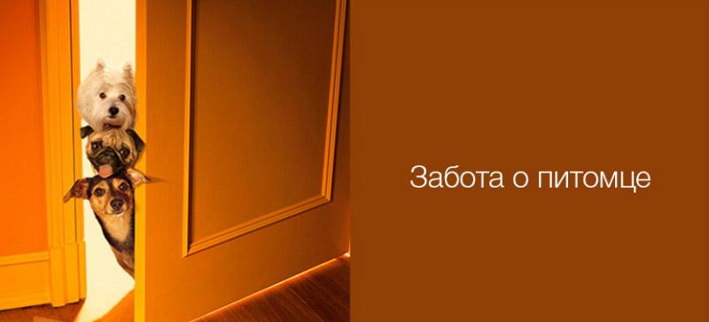 Xiaomi Mi Smart Home Occupancy Sensor